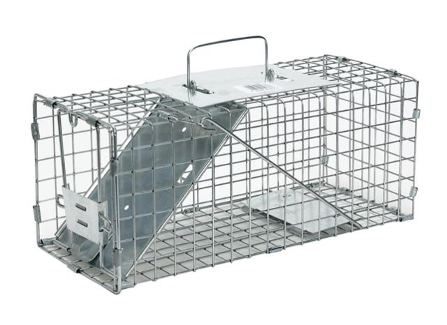 Where to find TRAP, ANIMAL 24x7x7 in Cincinnati